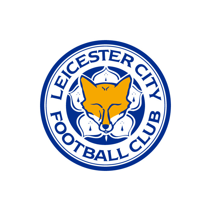 Leicester City Background